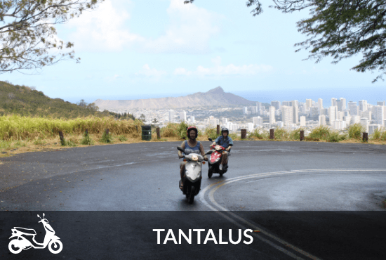 Moped-Tantalus